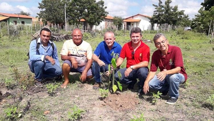 IFPI Campus José de Freitas inicia implantação de quintais produtivos em residências