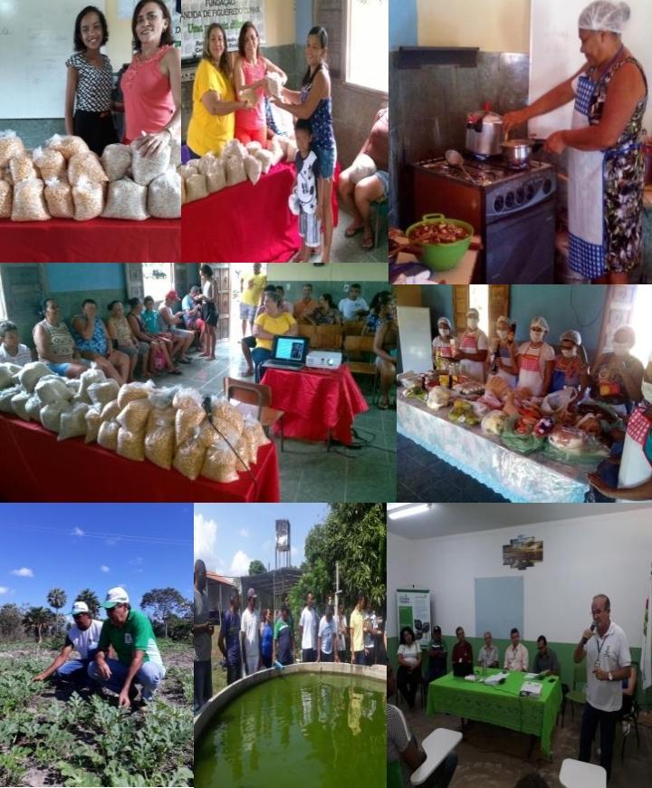 Acontece nos dias 26 e 27 de outubro I Feira de Agricultura Familiar da Comunidade Sobradinho em José de Freitas